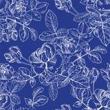 Дикий завод роз с цветками в белых чернилах на сини Вектор руки вычерченный вытравить картину стиля безшовную поверхностную Бутон иллюстрация вектора