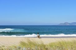 Дикий пляж с ярким песком, растительностью в песчанных дюнах и открытым морем с волнами и пеной Женщины и идти собаки Галиция, Ис стоковые изображения rf