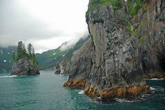 дикобраз залива Аляски Стоковые Фото