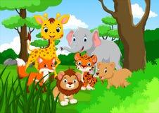 Дикое животное шаржа в джунглях Стоковые Изображения