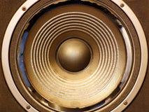 Диктор с неполноценной мембраной Стоковые Фотографии RF