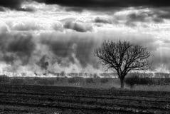 Динамический черно-белый пейзаж ландшафта Стоковые Изображения