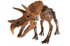 Динозавры забавляются изолированный на белой предпосылке с cl Стоковая Фотография RF