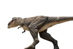 Динозавры тиранозавра забавляются изолированный на белой предпосылке с cl Стоковое Изображение RF