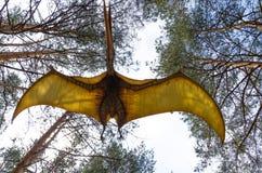 Динозавр модельное Pteranodon в полете в парк динозавра стоковое изображение