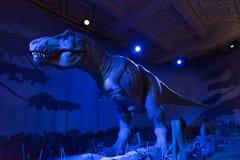 Динозавр - музей естественной истории Стоковые Фото