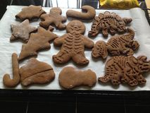 Печенья хлеба имбиря стоковое фото
