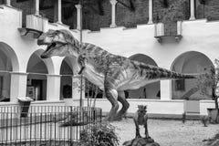 Динозавр, aka t-rex Rex тиранозавра, на выставке в Gubbio, Стоковое Фото