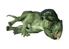 динозавр Protoceratops перевода 3D на белизне Стоковое Изображение RF