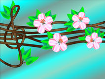Дискантовый ключ на зацветая дереве Стоковое Изображение