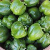 Дисплей зеленых перцев Стоковые Изображения RF