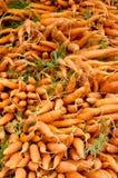 дисплей морковей Стоковые Фото