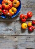 Дисплей различных треснутых томатов heirloom, обои Vegan космоса экземпляра Стоковое Изображение RF
