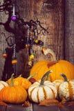 Дисплей тыквы с листьями осени против деревенской задней части хеллоуина Стоковое Изображение