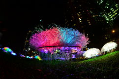 Дисплей цветка СИД на поле Стоковая Фотография RF