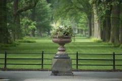 Дисплей цветка Central Park Стоковое фото RF