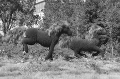 Дисплей MosaïCanada 150 лошадей стоковая фотография rf