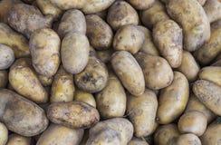 Дисплей с свежими картошками Стоковые Изображения RF