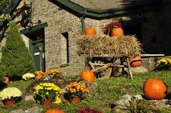 Дисплей хеллоуина Стоковые Фотографии RF