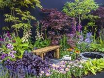 Дисплей цветка Стоковые Фото