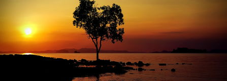 Дистантные берега Стоковое фото RF