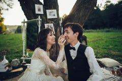 Дистантный взгляд молодого кавказца включил пар на романтичном picni Стоковое Фото