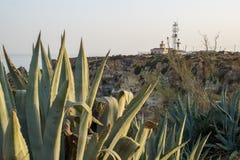 Дистантный взгляд Farol da Ponta da Piedade в Лагосе, Португалии стоковое изображение