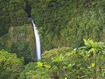дистантный водопад взгляда la fortuna стоковые фото