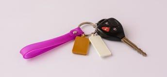 Дистанционное управление Keychain стоковые изображения rf