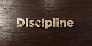 Дисциплина - grungy деревянный заголовок на клене - представленное 3D изображение неизрасходованного запаса королевской власти иллюстрация штока