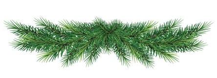 Длинная гирлянда ветвей рождественской елки Реалистическая ель bo Стоковое Фото