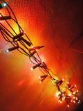 Длинная и multi покрашенная светлая цепь Стоковая Фотография RF