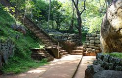 Длинная лестница в парке Sigiriya стоковое фото rf
