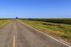 Длинная пустая проселочная дорога в сельском Техасе вдоль нивы; Концепция для перемещения в Техасе Стоковое фото RF
