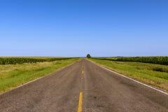 Длинная пустая проселочная дорога в сельском Техасе вдоль нив Стоковая Фотография