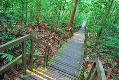 длиннее низкое простирание вниз водя лестниц Стоковая Фотография