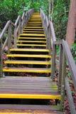 длинние лестницы высоко водя протягивают вверх Стоковая Фотография