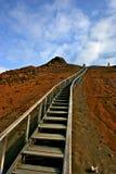 длинние лестницы Стоковая Фотография RF