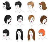 Длинный заплетает творческие каштановые волосы, изолированные на белой предпосылке Стили причесок женщины Установите иллюстраций  иллюстрация штока