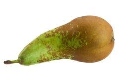 Длинный плодоовощ груши на белизне Стоковая Фотография