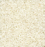 длинняя белизна риса Стоковое Изображение