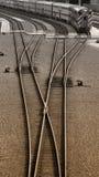 длинняя езда стоковая фотография rf
