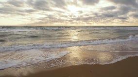 Длиной gentle волны на песчаном пляже сток-видео