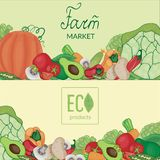 Farm fruits and vegetables with logos and lettering on a beige and green background vector illustration