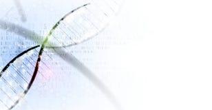 Дна и предпосылка медицинских и технологии футуристическая молекула s Стоковое Изображение