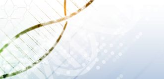Дна и предпосылка медицинских и технологии футуристическая молекула s Стоковое фото RF
