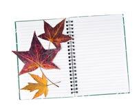 Дневник или журнал - с высушенными, отжатыми листьями руки песок Стоковое Изображение RF