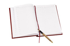 Дневник & ручка Стоковые Изображения