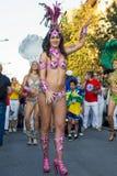 Дни Бразилии Стоковое Изображение RF