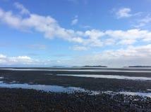 Дни пляжа стоковое изображение rf